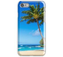 Coconut Palm tree on the beach in Hawaii, Kauai iPhone Case/Skin