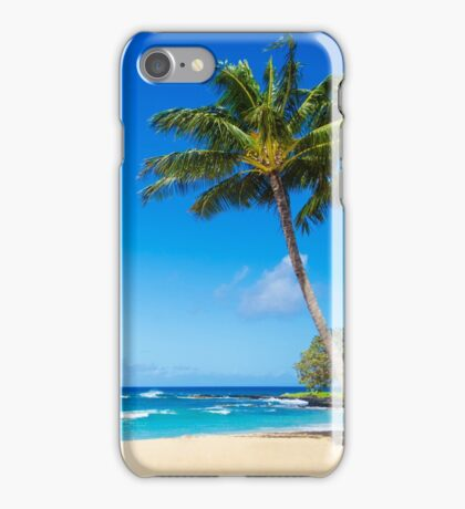 Coconut Palm tree on the beach in Hawaii, Kauai iPhone Case/Skin