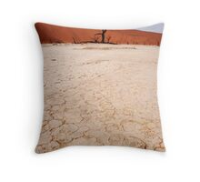 Flei in Namibia, Africa Throw Pillow