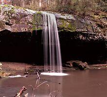 Lower Kalimna Falls by Melanie Conroy
