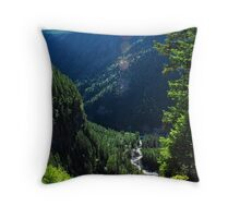 Spahats Creek - Wells Gray Provincial Park Throw Pillow