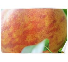 The Giant Peach Poster