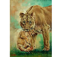 Lioness And Cub Photographic Print