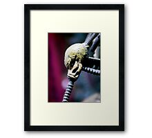 ©AS Take A Breath IA Framed Print