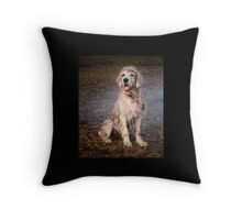 Dogs with game face on .36 Throw Pillow