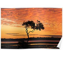Bay Sunset Poster