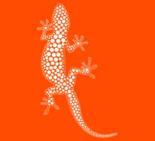 Gecko Kids Clothes
