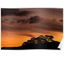 Bush Sunset Poster
