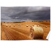 Harvest before the storm Poster