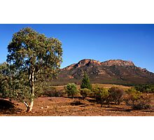 Outback Australia the Flinders Ranges Photographic Print