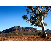 Australian Outback of the Flinders Ranges Photographic Print