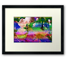 Blooms & Blossoms. Peach Cocktail. Framed Print
