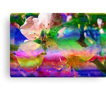 Blooms & Blossoms. Peach Cocktail. Canvas Print