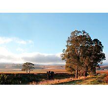 Barossa Valley Autumn Photographic Print