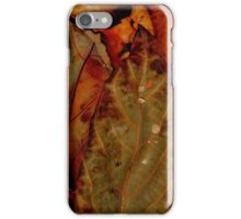 Autumn Sparkle iPhone Case/Skin