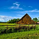 Ravalli County (Montana) Farm by Bryan D. Spellman