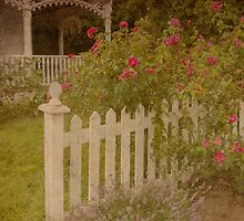 House with the white picket fence # 3 by Steve Silverman