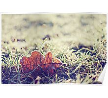 once upon a frosty morning., Poster