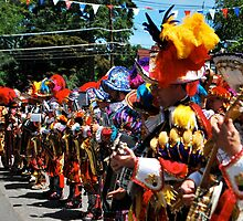 Quaker City String Band ( Mummers)  by Jeff Stroud
