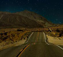 Desert  by Mary Ann Reilly