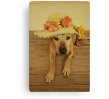 In my Easter Bonnet Canvas Print