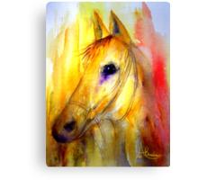 Spirit & Fire Canvas Print