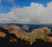 Waimea Canyon by Michaela Byrd