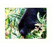 Alpha male Howler Monkey Art Print