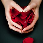 Happy Valentines - Hands and Rose Petals by Nigel Johnson
