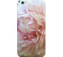 One Sweet World iPhone Case/Skin