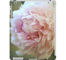 One Sweet World iPad Case/Skin