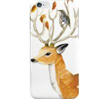 Deer with bird iPhone Case/Skin