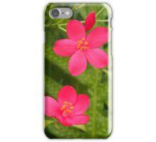 Peregrina flower: Kona, Hawai'i iPhone Case/Skin