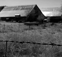 Old Barn fencing. by Harv Churchill