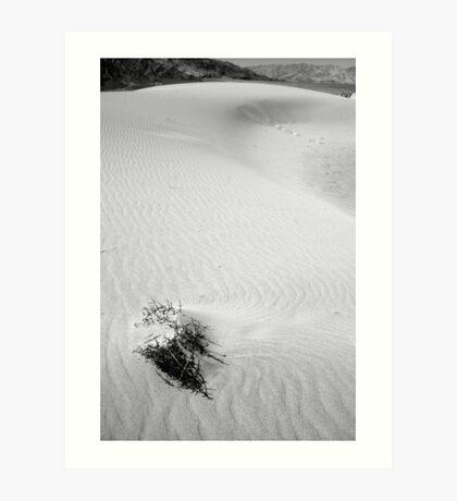 Death Valley, California Art Print