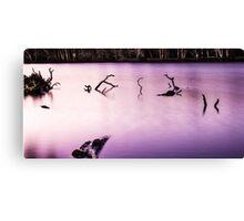 Sticks in a lake Canvas Print