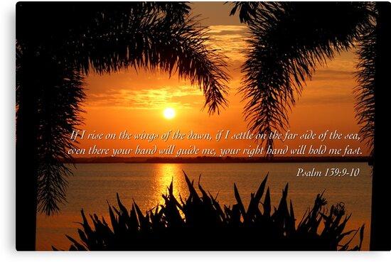 Psalm 139 by JpPhotos
