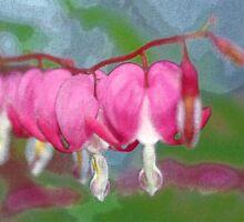 Pastel Bleeding Hearts by Darlene Virgin