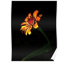 Flower Life Poster