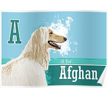 A is for Afghan Poster