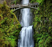 Multnomah Falls by Barbara  Brown