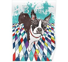 B is for Boston Terrier IV Poster