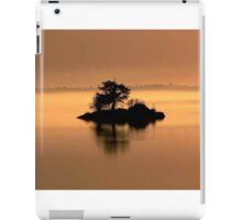 """""""And The Fog Rolls In"""" iPad Case/Skin"""