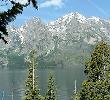 Take Three Tetons Range West Jenny Lake by k253