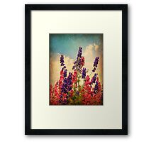 Delphiniums (Textured) Framed Print