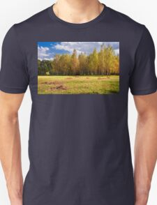 Glade with birches T-Shirt
