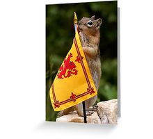 Jasper and The Royal Flag of Scotland Greeting Card