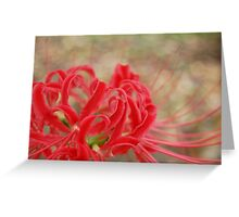 Vibrant Red and Green Flower Design Greeting Card
