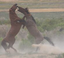 Out Of The Dust by Gene Praag