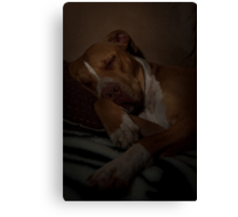 Out for the Count! Canvas Print